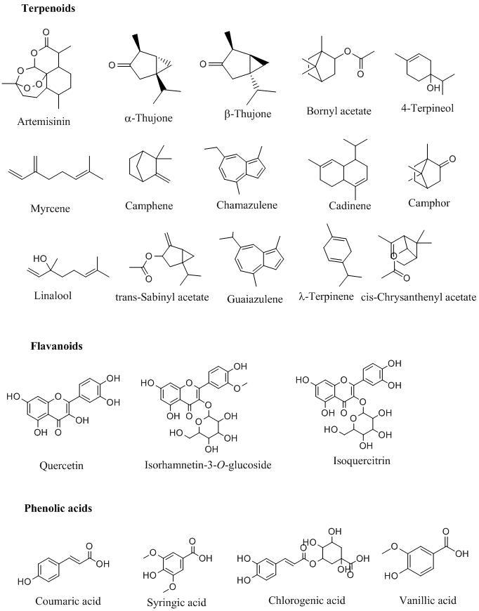 Bioactive-components-of-wormwood