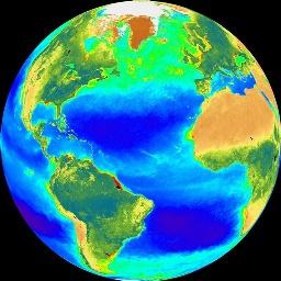 phytoplankton in Atlantic ocean