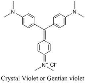 Gentian-violet